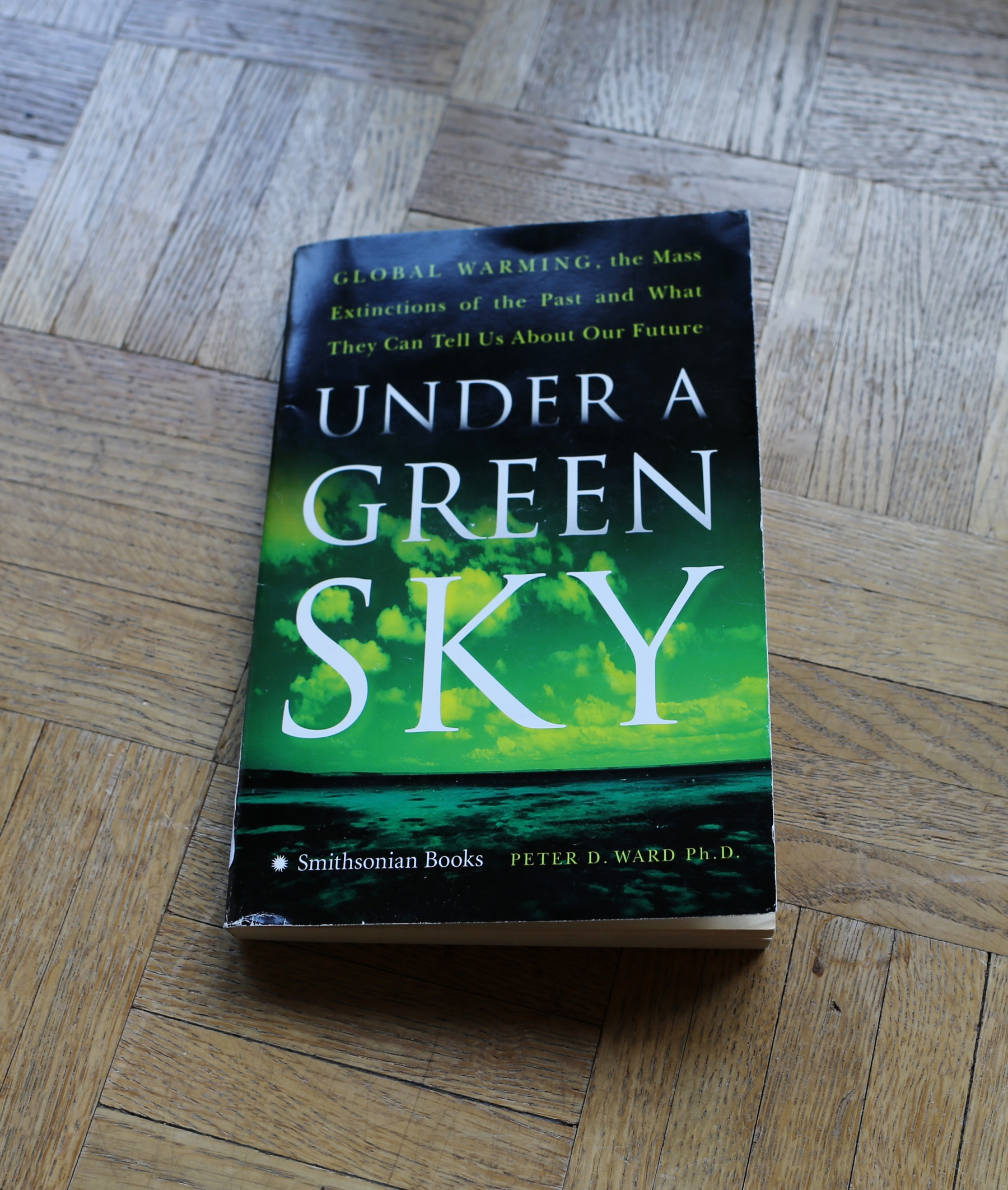 Cover of the book Under A Green Sky